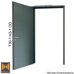 t30 1 h3 od brandschutzt r 1000 mm x 2000 mm abholware. Black Bedroom Furniture Sets. Home Design Ideas