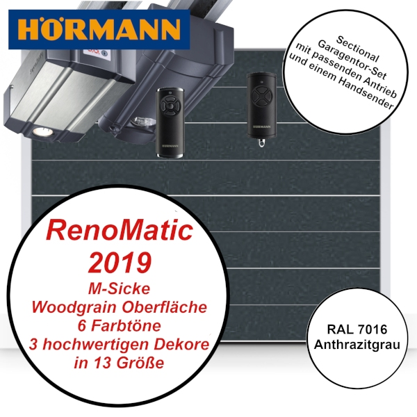 Hörmann RenoMatic 2019 in CH 7016 Anthrazitgrau