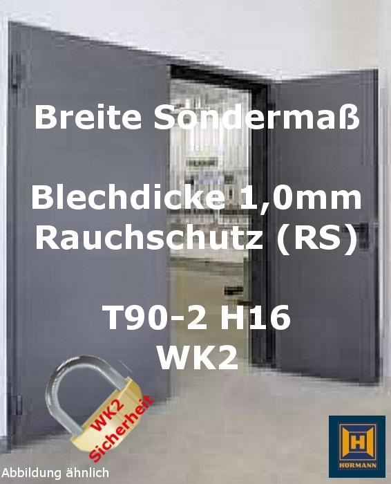 t90 2 rs h16 wk2 rauch feuerschutzt r im sonderma. Black Bedroom Furniture Sets. Home Design Ideas